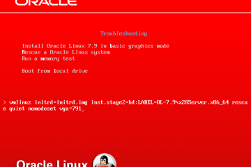 Console de secours Oracle Linux